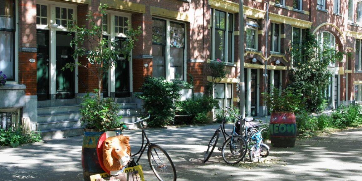 Zelfbeheerproject in de Teilingerstraat Rotterdam 2017