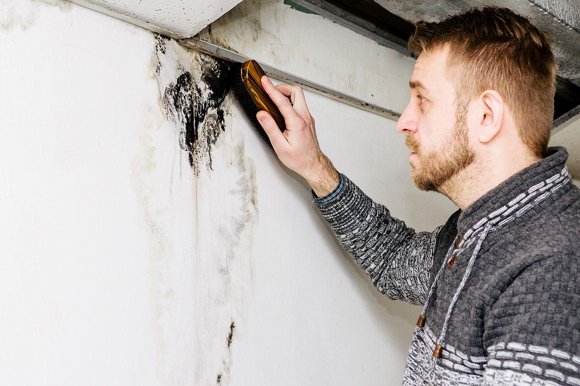 Man verwijdert zwarte schimmel van muur met een borstel