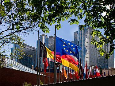 Wapperende vlaggen van EU-landen en EU-vlag
