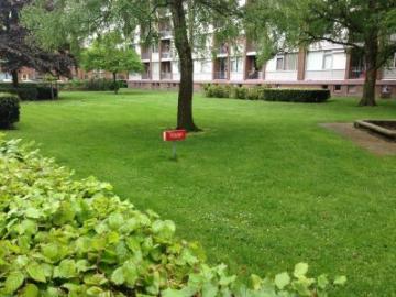 openbaar groen in Doetinchem
